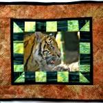 The stalking tiger